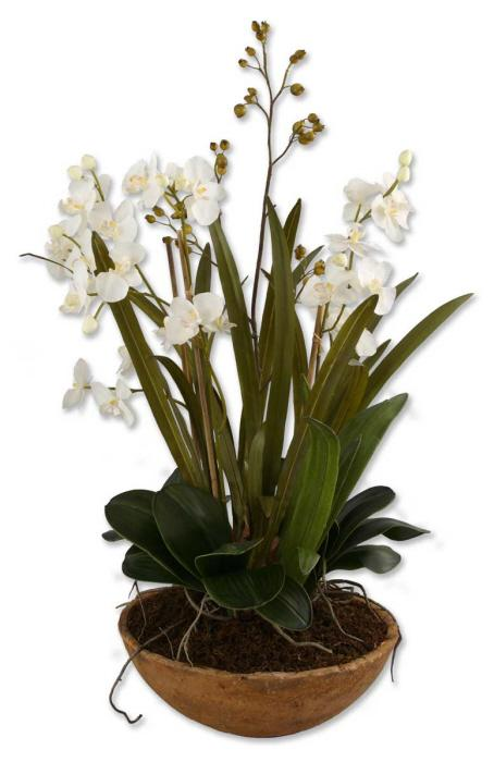 Uttermost 60039 Moth Orchid Planter - фото 1
