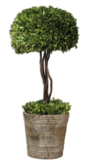 Uttermost 60095 Preserved Boxwood, Tree Topiary - фото 2
