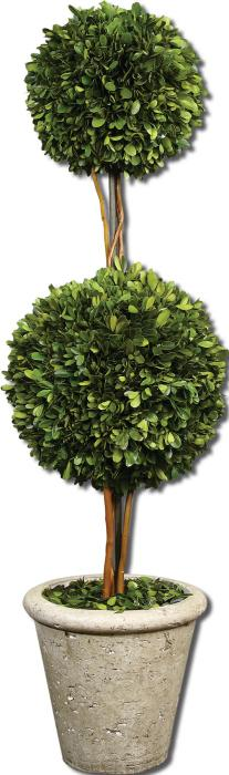 Uttermost 60106 Preserved Boxwood, Two Sphere Topiar - фото 2