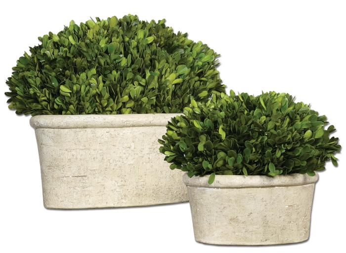 Uttermost 60107 Preserved Boxwood, Oval Domes, S/2 - фото 2