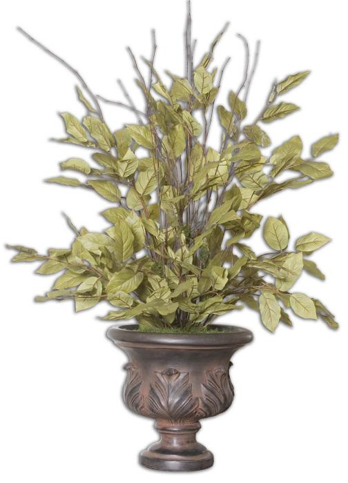Uttermost 61005 Sugary Salal, Evergreen Plant - фото 2