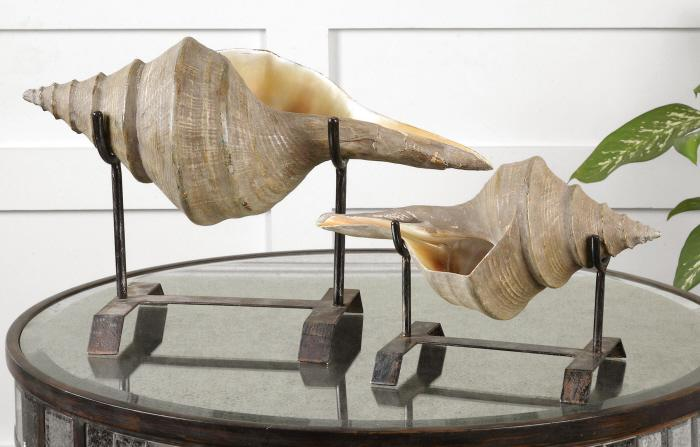 Uttermost 19556 Conch Shell, Sculpture, S/2 - фото 1