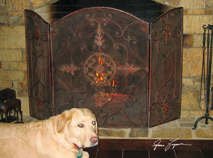 Uttermost 20508  Egan, Fireplace Screen - фото 1