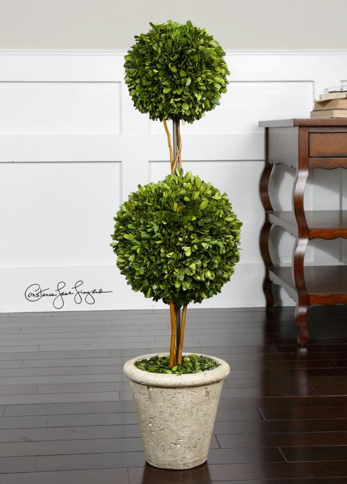 Uttermost 60106 Preserved Boxwood, Two Sphere Topiar - фото 1