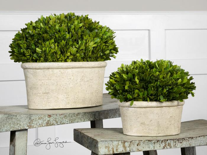 Uttermost 60107 Preserved Boxwood, Oval Domes, S/2 - фото 1