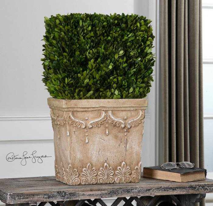 Uttermost 60110 Boxwood, Hedge Planter - фото 1