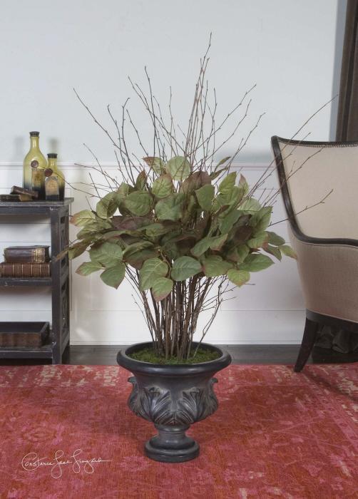 Uttermost 61001 Sweet Salal, Evergreen Plant - фото 1