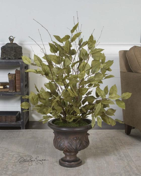 Uttermost 61005 Sugary Salal, Evergreen Plant - фото 1